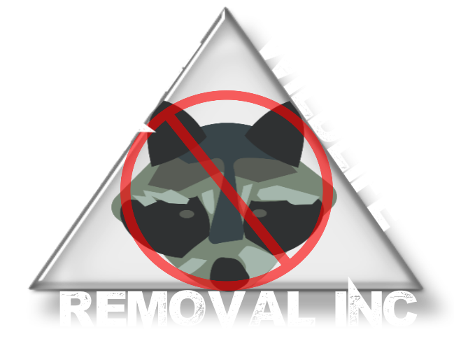 Triangle Wildlife Removal (919) 661-0722 Raleigh, NC